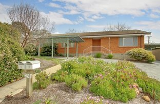 Picture of 24 Basedow Street, Torrens ACT 2607