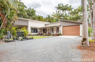 Picture of 45 Carpenters Road, Cooroy QLD 4563