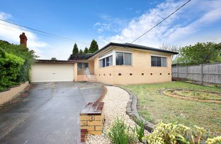Picture of 3 Binya Court, Dandenong North VIC 3175