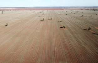 Picture of - 'Franks Paddock' Cornells road, Condobolin NSW 2877
