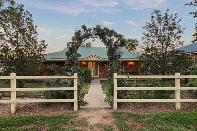 Picture of 43 Church Street, FORBES NSW 2871