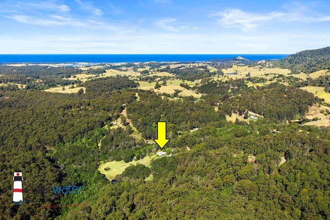 Picture of 504 Punkalla Tilba Rd, CENTRAL TILBA NSW 2546