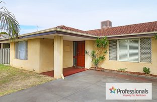 Picture of 33 Shelburn Rd, Thornlie WA 6108