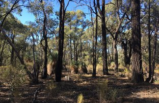 Picture of Lot 15 Gold Diggers Road, Bailieston VIC 3608