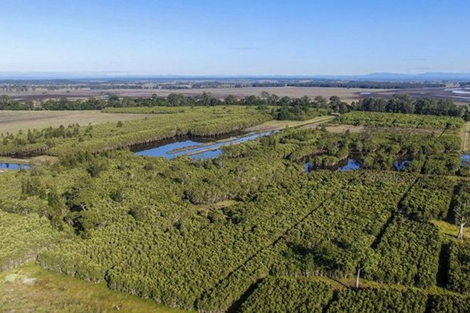Picture of 58 Wooli Road, TUCABIA NSW 2462