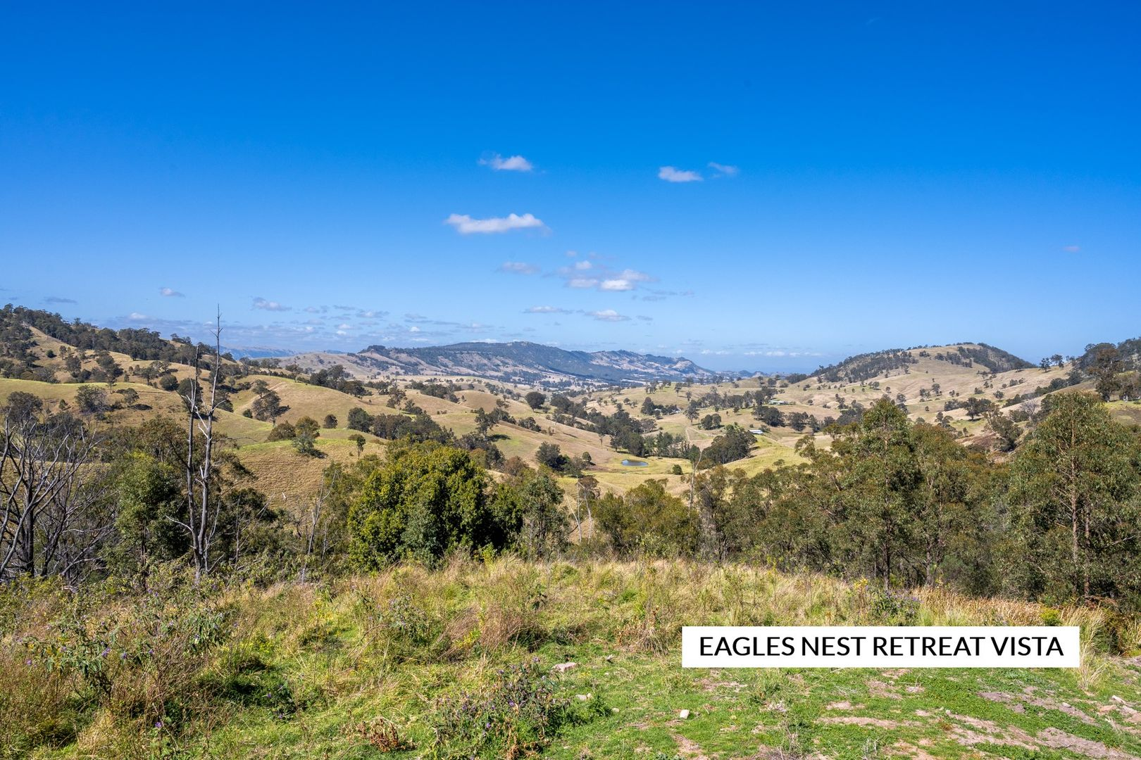 815 Goorangoola Creek Road, Singleton NSW 2330, Image 1