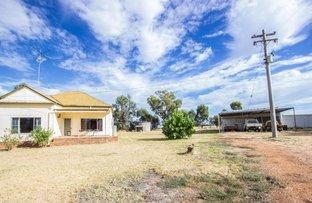 123 Red Hill Road, Narrandera NSW 2700