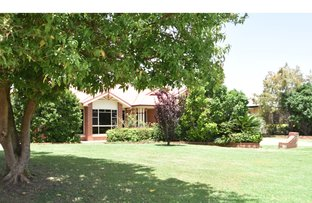 Picture of 14 Peters Place, Goondiwindi QLD 4390