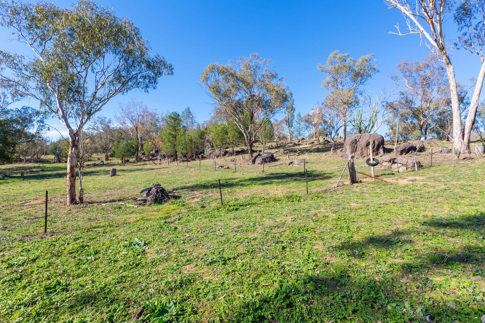 664 Daruka Road, Tamworth NSW 2340, Image 0