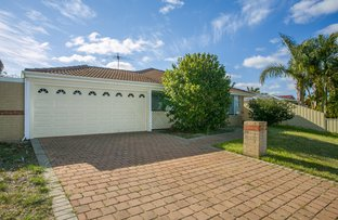 Picture of 61 Viridian Dr, Banksia Grove WA 6031