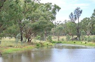 Picture of 188 Bilamurru Road, Mendooran NSW 2842