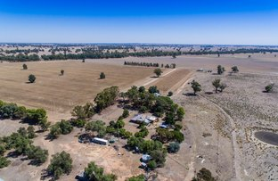 Picture of 1060 Hopefield Road, Hopefield NSW 2646