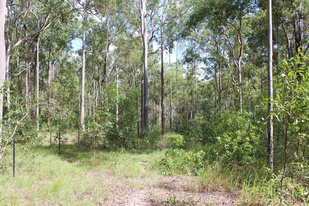 182 Arborthree Rd, Glenwood QLD 4570, Image 2