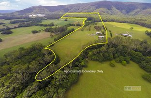 Picture of 190D McClellands Road, Bucca NSW 2450
