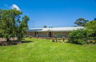 Picture of 20 Hillcrest Avenue, Faulconbridge NSW 2776