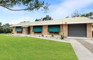 Picture of 8 Bell Street, Rosenthal Heights QLD 4370