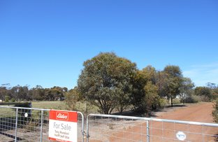 Picture of 531 Reilly Street, Broomehill Village WA 6318