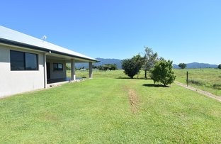 Picture of 144 Old Tully Road, Tully QLD 4854