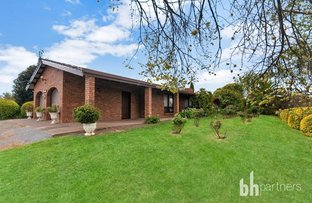 Picture of 205 Pedare Park Road, Woodside SA 5244