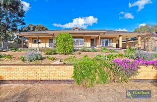 Picture of 24 Duffield Street, Gawler East SA 5118