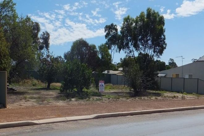 Picture of 148 federal st, NARROGIN WA 6312