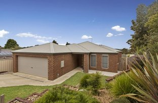 Picture of 8 Echidna  Court, Kilmore VIC 3764