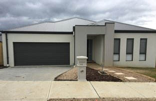 Picture of 63 Silverwood Drive, Mernda VIC 3754