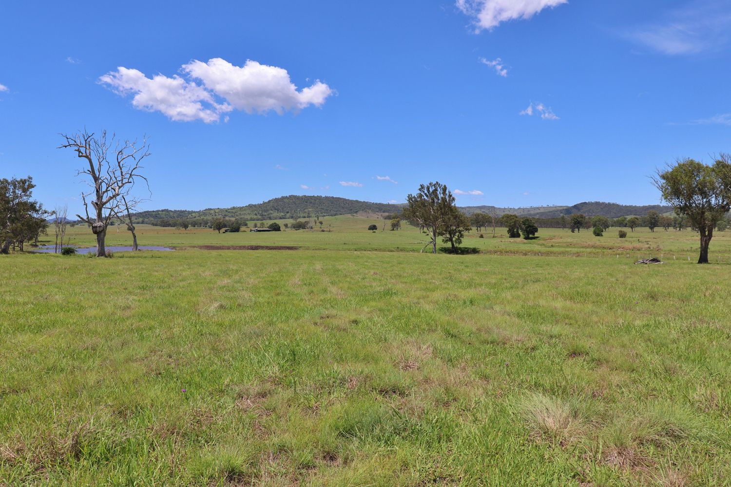 Lot 100 Yore Road, Beaudesert QLD 4285, Image 1