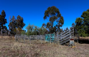 Picture of Lot 2 Reedy Creek Road, Benair, Kingaroy QLD 4610