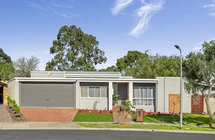 Picture of 12 Lackenheath Court, Dingley Village VIC 3172