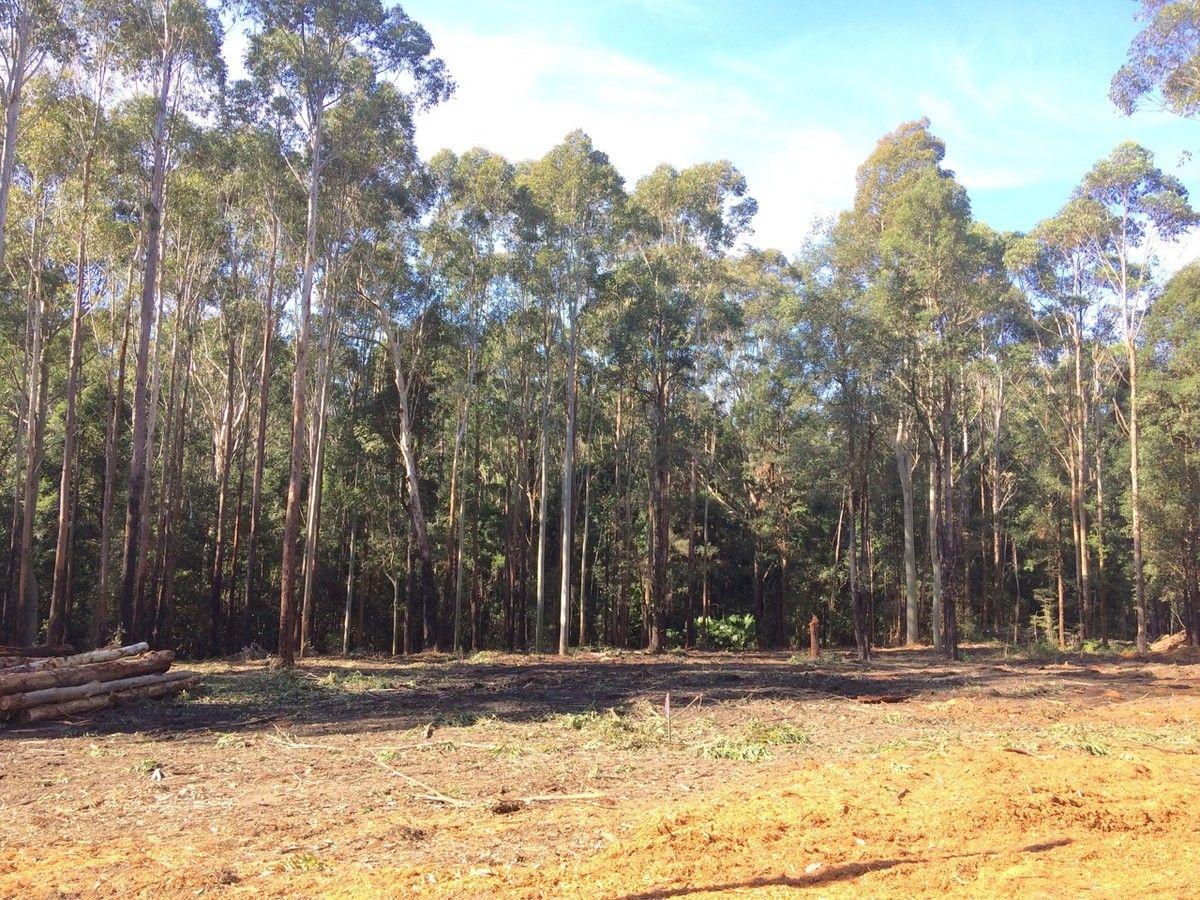 11 Battunga Drive, Tomerong NSW 2540, Image 1
