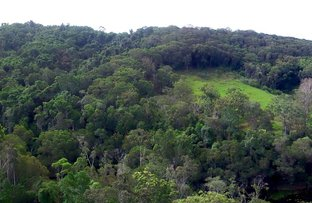 Picture of Lot 33 Crothers Road, Kuranda QLD 4881