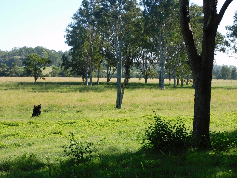 140 Dobies Bight Road, Dobies Bight NSW 2470, Image 0