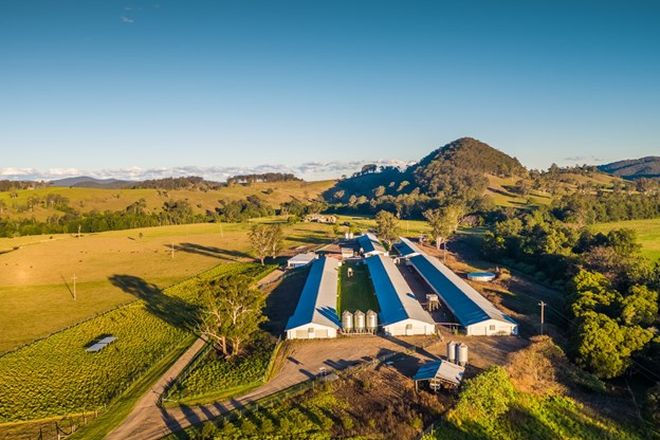 Picture of Stroud Road Free Range Egg Farm, STROUD ROAD NSW 2415