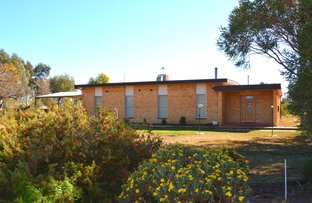 Picture of 2408 Silver City Highway, Curlwaa NSW 2648