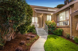 Picture of 3/37 Millicent Street, Rosanna VIC 3084