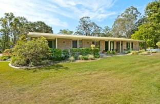 Picture of 219 Redwood Circle, Jimboomba QLD 4280