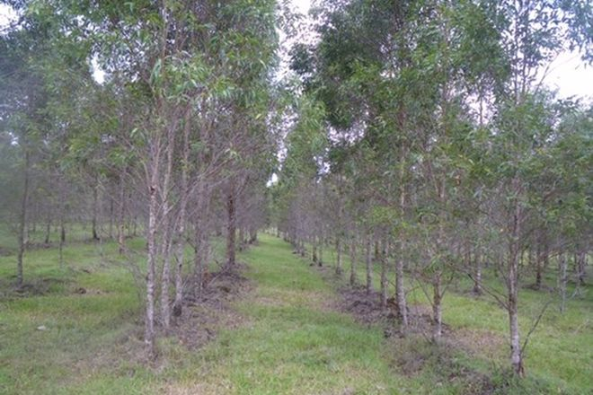 Picture of Lot 55 Bruxner Highway, TABULAM NSW 2469