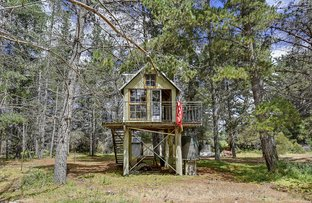 Picture of 54 Roaring Beach Road, South Arm TAS 7022