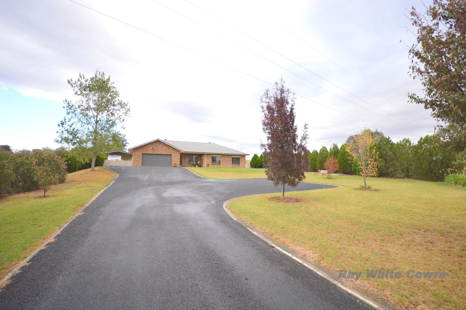 50 Dawson Drive, Cowra NSW 2794, Image 1