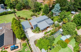 Picture of 45A Hawkesbury Road, Springwood NSW 2777