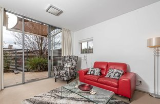 Picture of 168/116 Easty Street, Phillip ACT 2606