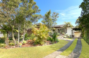 Picture of 8 Geelong Road, Cromer NSW 2099