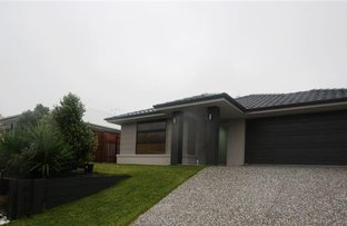 Picture of 3 Velox Circuit, Upper Coomera QLD 4209