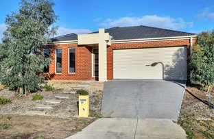 Picture of 20 Fitch Court, Ballan VIC 3342