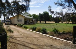 Picture of 800 Cosgrove - Caniambo Rd, Cosgrove South VIC 3631