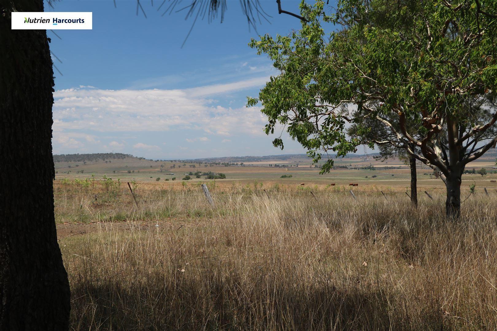 71 Sparksman Road, Allora QLD 4362, Image 1