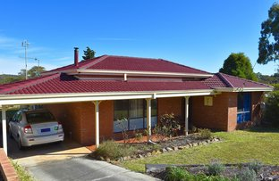 Picture of 19 Hassell Street, Mount Barker WA 6324