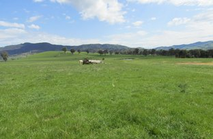 Picture of 7885 Murray Valley Highway, Bullioh VIC 3700