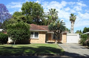 Picture of 34 Botanic Grove, Campbelltown SA 5074